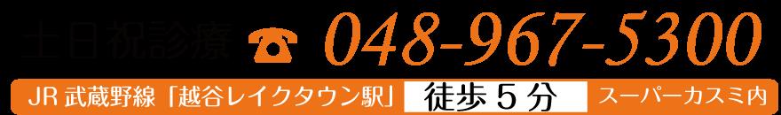 048-967-5300